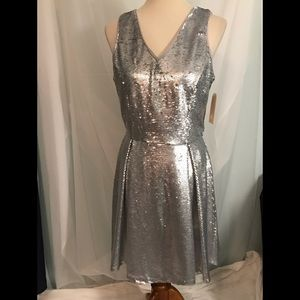 Dresses & Skirts - Silver Sequin Fit and Flare Dress